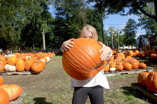 Pumpkin carried by a child
